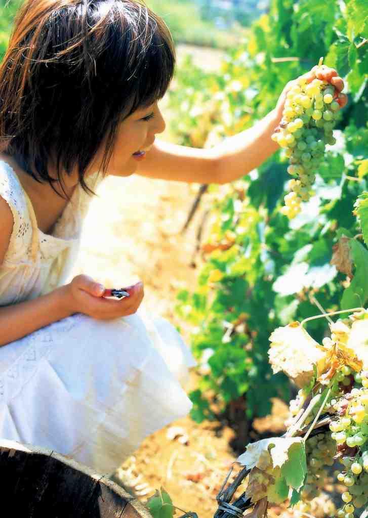 釈由美子 画像 073