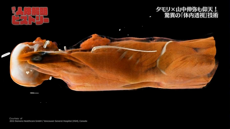 橋本マナミ 画像 141