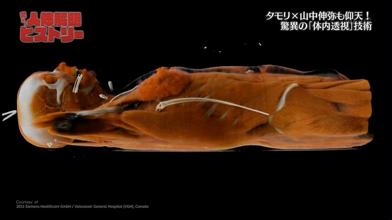 橋本マナミ 画像 143
