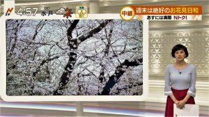 ホラン千秋 画像 001